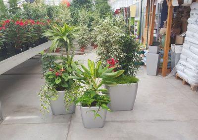 Garden-Center-1-min