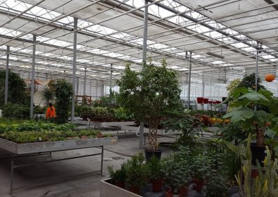 Garden-Center-4-min