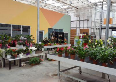 garden-center-15